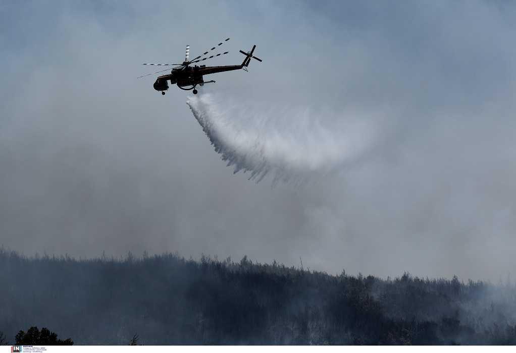 Χαλκίδα: Φωτιά τώρα σε δασική έκταση