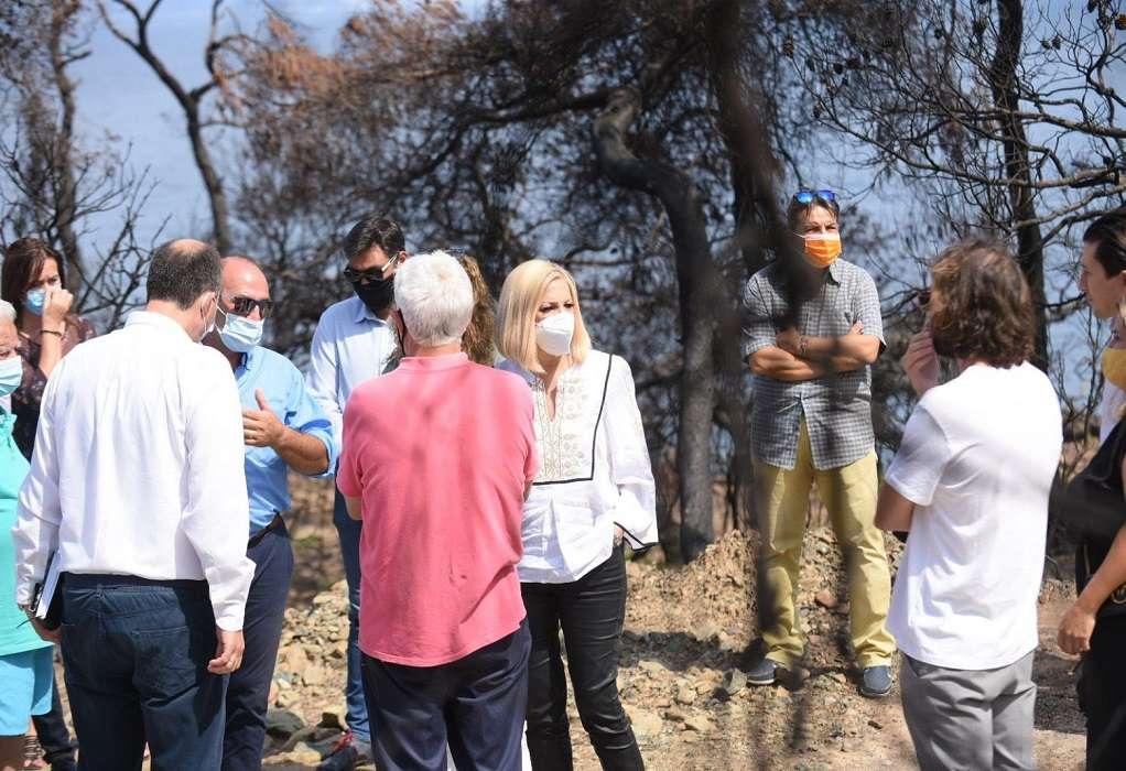 Φ. Γεννηματά από Σχίνο Κορινθίας: Καμία κίνηση ανακούφισης δυο μήνες μετά την καταστροφή