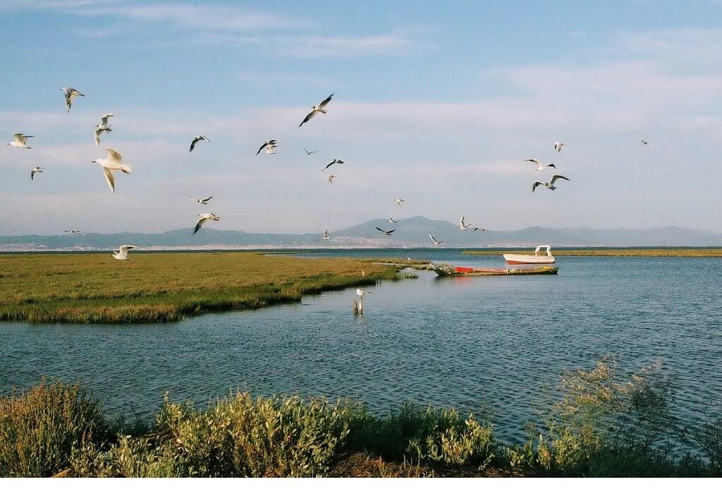 Η Απόφαση σταθμός του ΣτΕ για τις προστατευόμενες περιοχές
