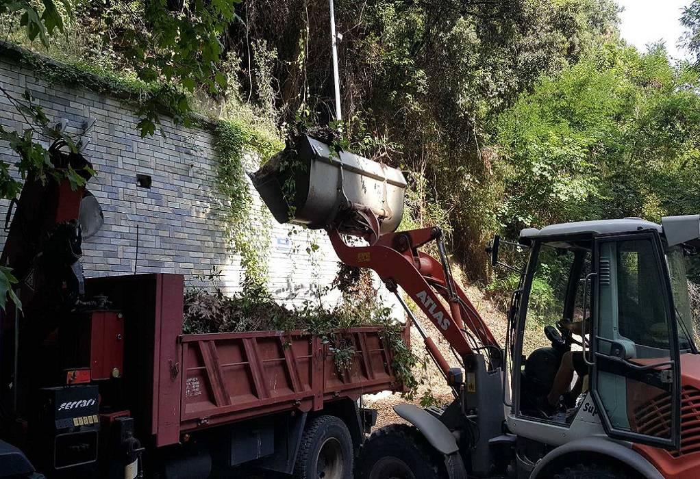 Δ. Δίου-Ολύμπου: Καθαρισμός της οδού Μακεδονομάχων στον Πλαταμώνα