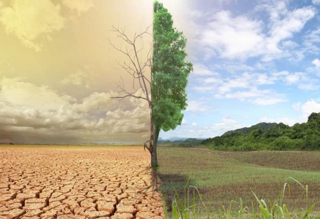 Ζερεφός: Κίνδυνος για ερημοποίηση του 40% της Ελλάδας