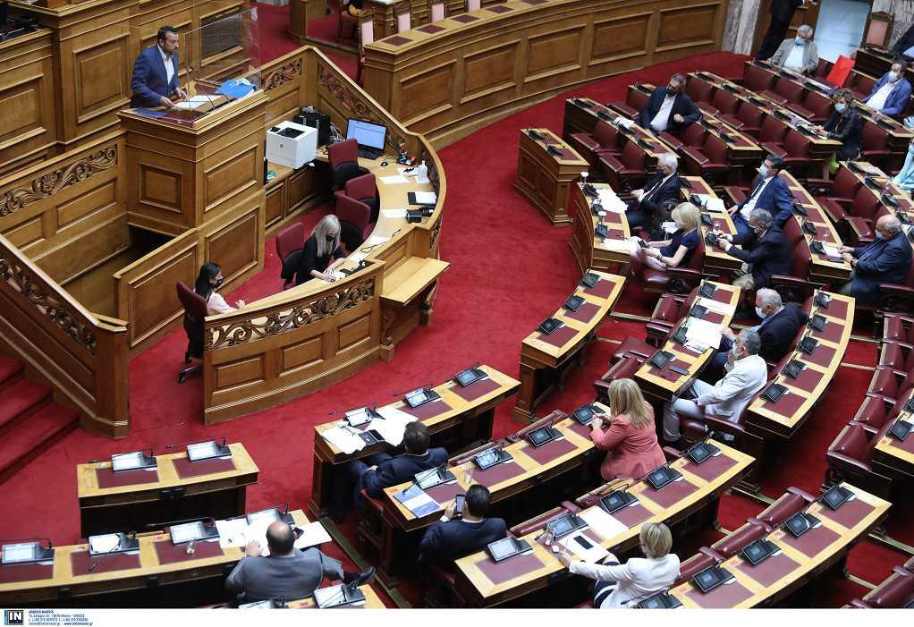 Βουλή: Υπερψηφίστηκε το νομοσχέδιο για τα ζώα συντροφιάς