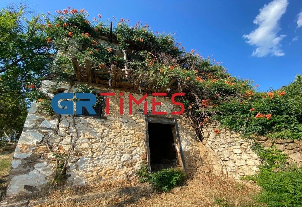 Το γραφικό χωριό με τους έξι κατοίκους και τα 300.000 ελαιόδεντρα στη Χαλκιδική