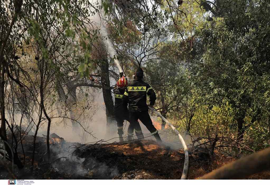 Φωτιά στη Σταμάτα: Έκτακτες ανακοινώσεις από τον δήμο Διονύσου