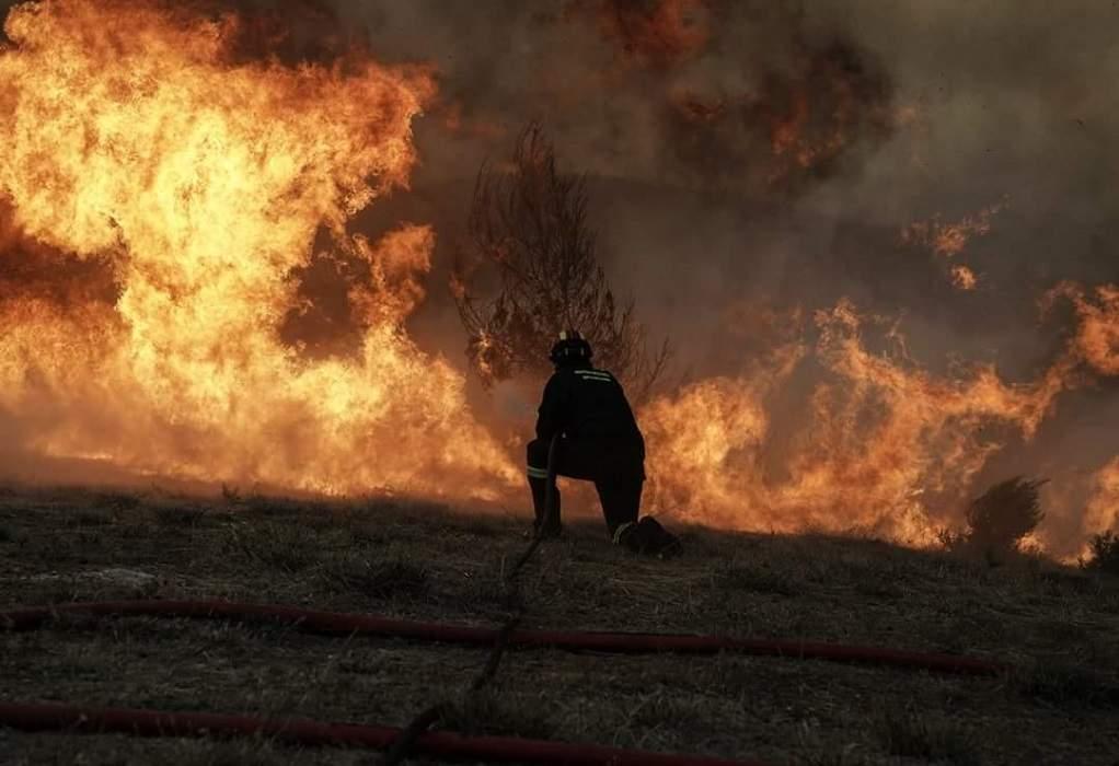 Αττική: Πυρκαγιά σε δασική έκταση στο Κορωπί