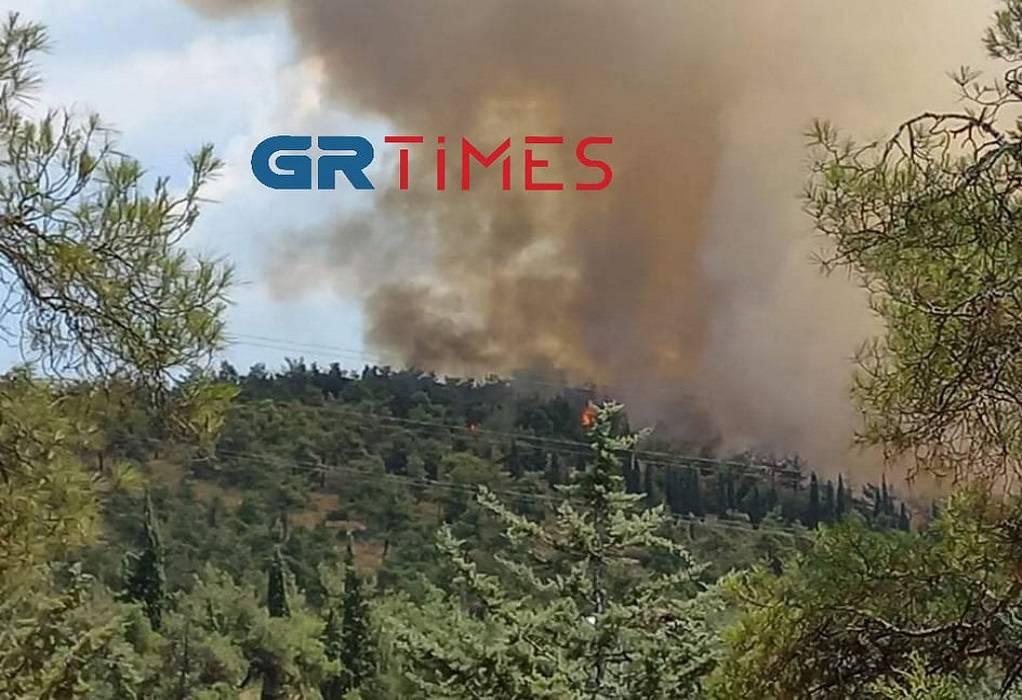 Κ. Ζέρβας για φωτιά στο Σέιχ Σου: Συνέβη αυτό που φοβόμασταν (VIDEO)