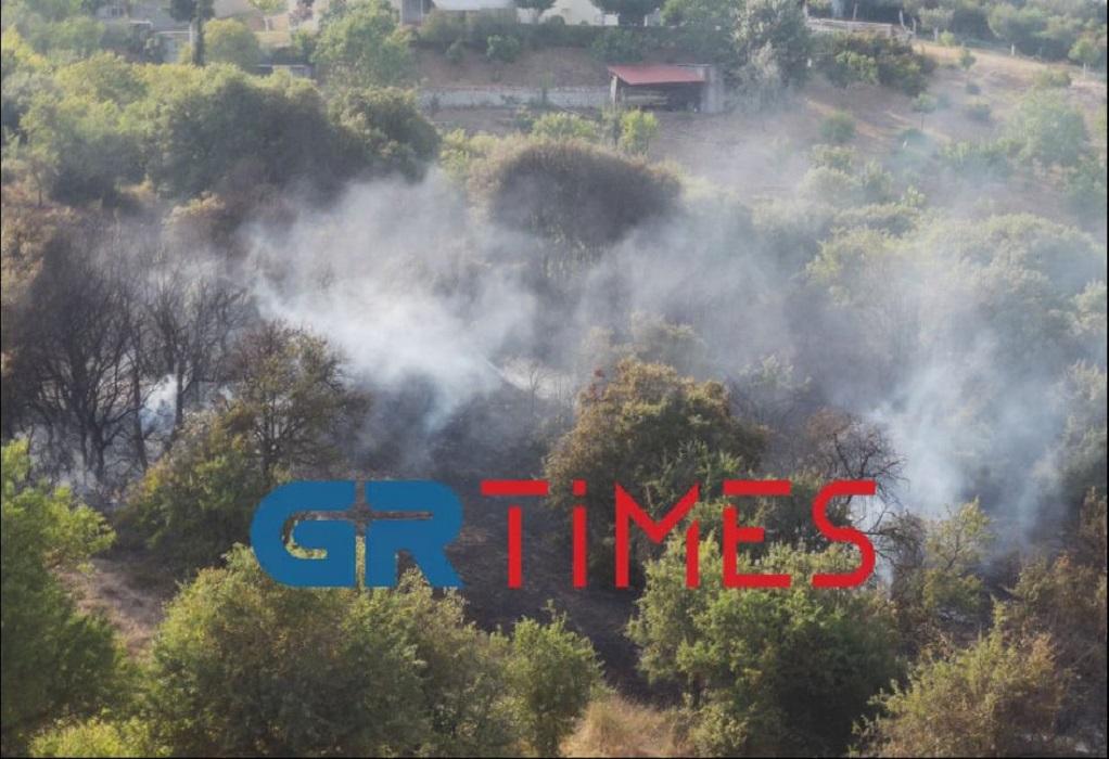 Θεσσαλονίκη: Τέθηκε άμεσα υπό έλεγχο επικίνδυνη πυρκαγια στο Φίλυρο (VIDEO-ΦΩΤΟ)
