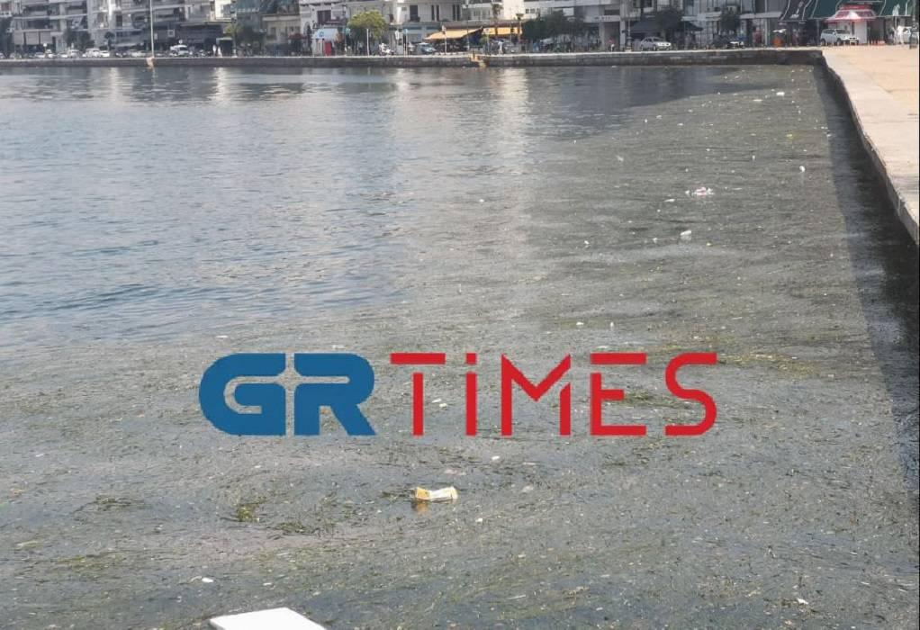 Γέμισε φύκια και σκουπίδια ο Θερμαϊκός (ΦΩΤΟ-VIDEO)