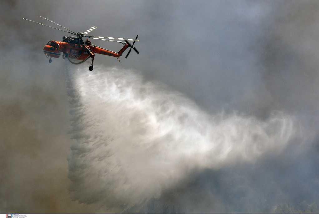 Πυροσβεστική: 40 δασικές πυρκαγιές το τελευταίο 24ωρο