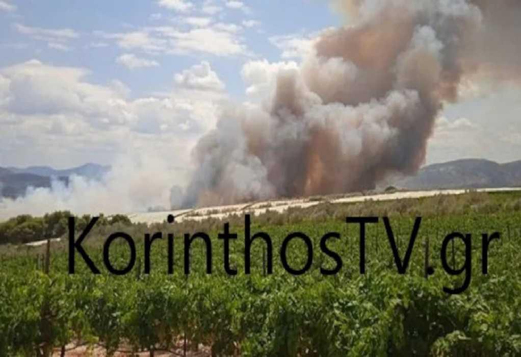 Κορινθία: Υπό μερικό έλεγχο η φωτιά στο Καλέντζι– Μία σύλληψη