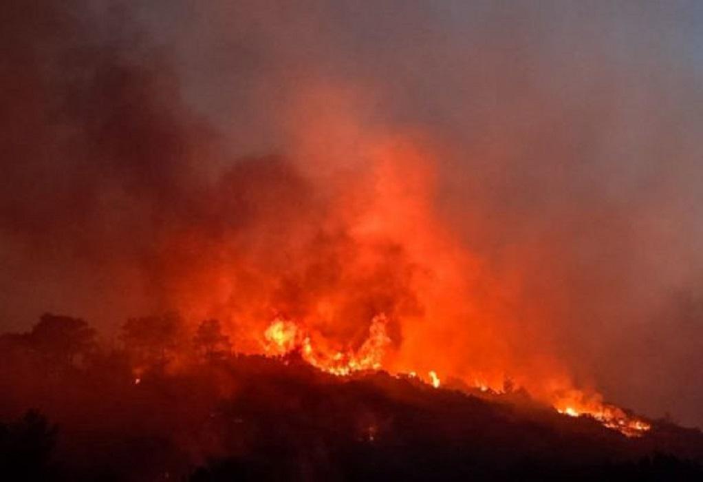 Υψηλός κίνδυνος πυρκαγιάς σήμερα σε Σέρρες, Θεσσαλονίκη, Χαλκιδική
