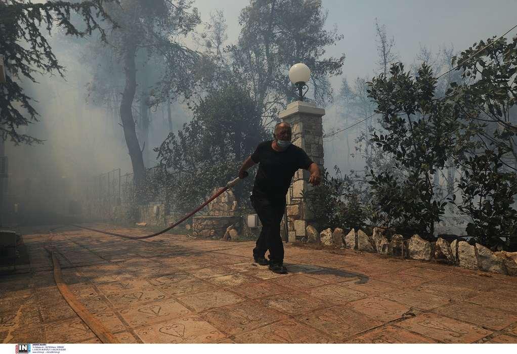 Πυρκαγιά στη Σταμάτα: Συνελήφθη μελισσοκόμος