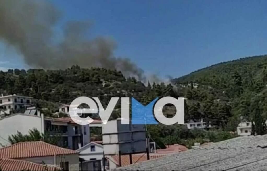 Μεγάλη φωτιά στη Λίμνη Ευβοίας κοντά σε κατοικημένη περιοχή