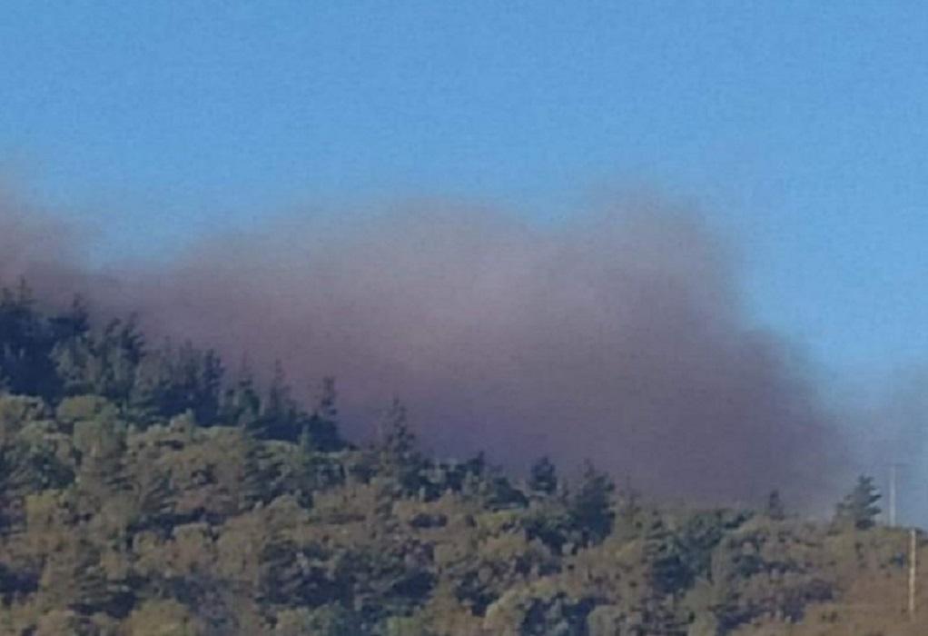 Πυρκαγιά στη Χίο – Εκκενώθηκαν δύο χωριά (VIDEO)