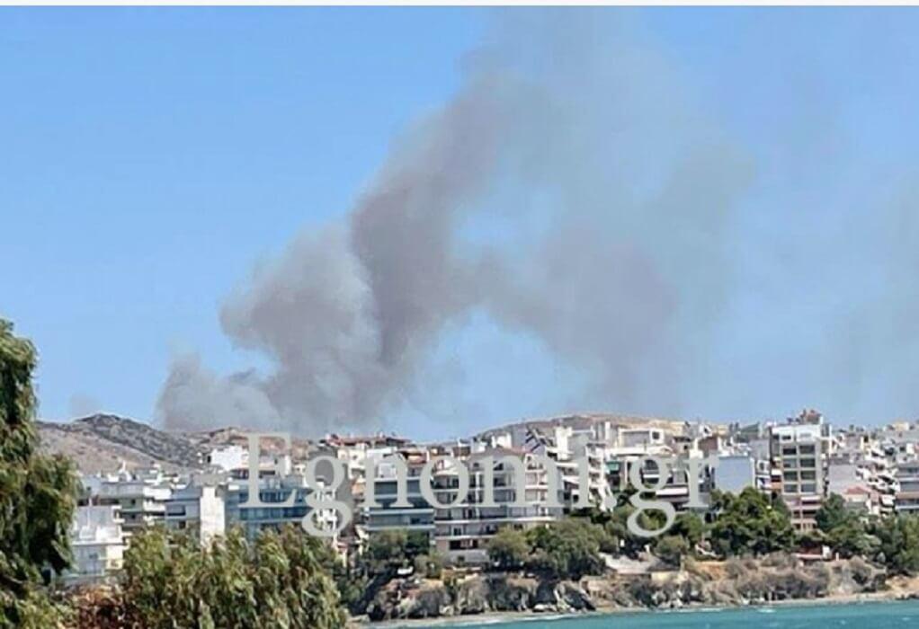 Φωτιά στη Χαλκίδα κοντά σε κατοικημένη περιοχή-Έχει «πνιγεί» με καπνούς η πόλη