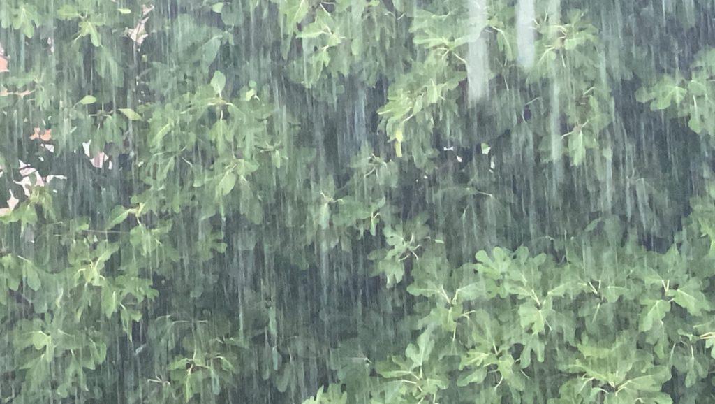 Επελαύνει η κακοκαιρία «Μπάλλος»: Οι περιοχές με τα μεγαλύτερα ύψη βροχής (ΧΑΡΤΗΣ)
