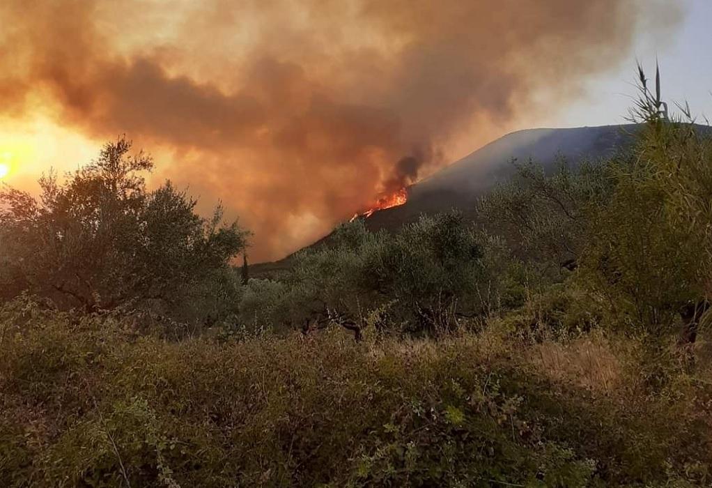 Πυρκαγιές στην Ελλάδα: Μάχη με τις φλόγες σε Εύβοια, Αρχαία Ολυμπία και Μεσσηνία