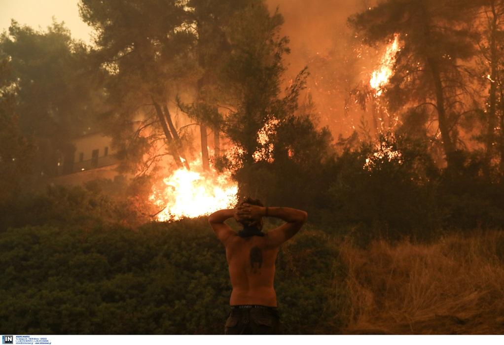 Φωτιές στην Εύβοια – Λέκκας: 300.000 στρέμματα δάσους έχουν καταστραφεί ολοσχερώς