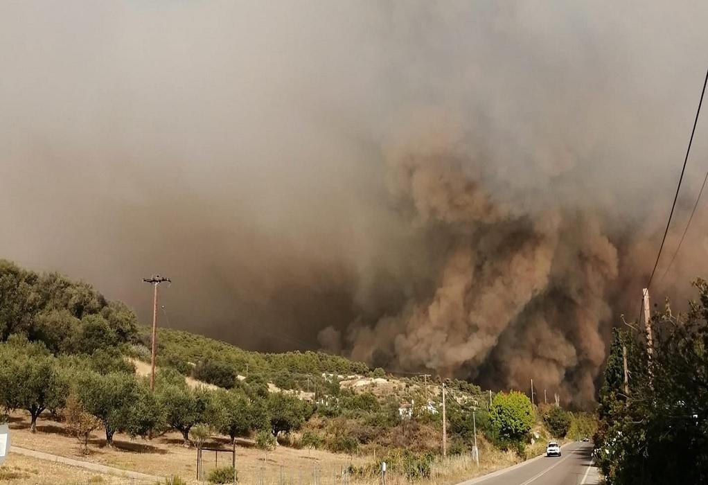 Πυρκαγιά στην Εύβοια: Εκκενώνεται το χωριό Κεχριές