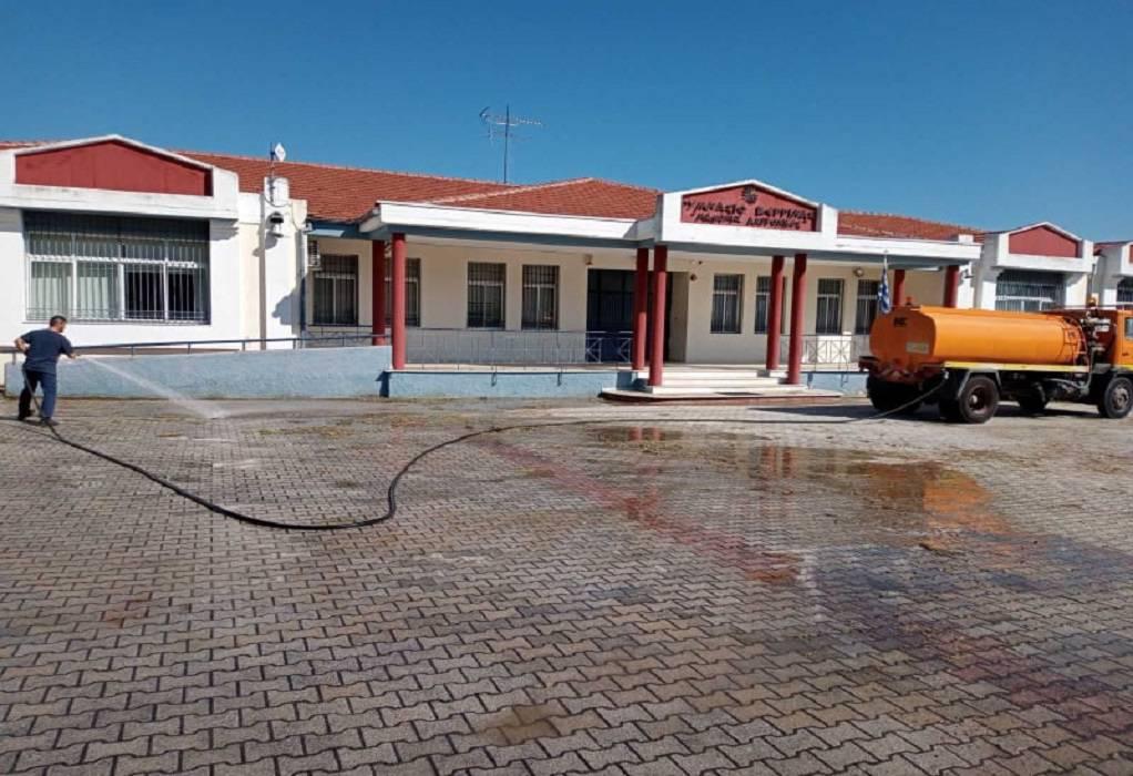 Δ. Βέροιας: Καθαρισμός αυλών και αποψίλωση δέντρων για τη νέα σχολική χρονιά