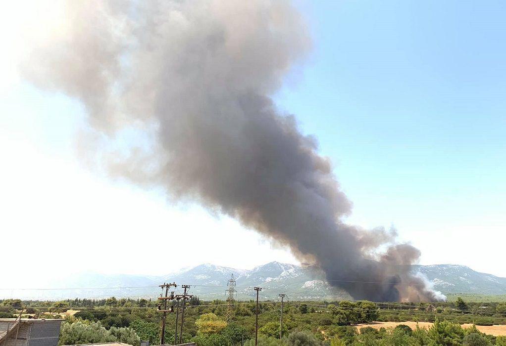 Mαίνεται η φωτιά στη Βαρυμπόμπη: Μήνυμα από το 112 – «Παραμείνετε σε ετοιμότητα» (VIDEO)