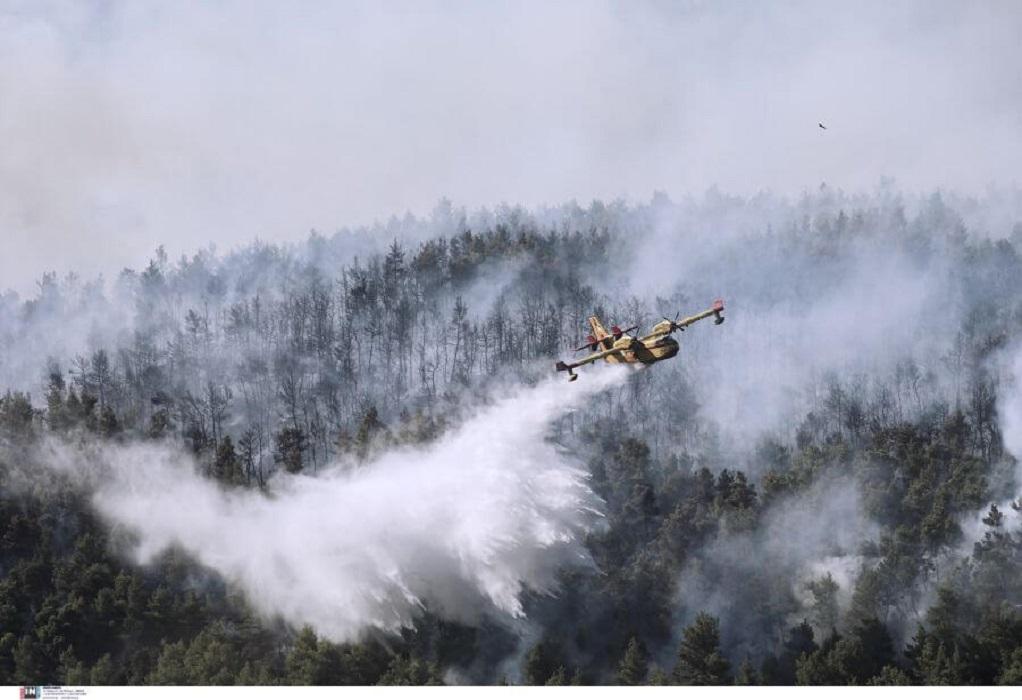 Φωτιά στα Βίλια: Κοντά στους οικισμούς Οινόη και Πανόραμα οι φλόγες