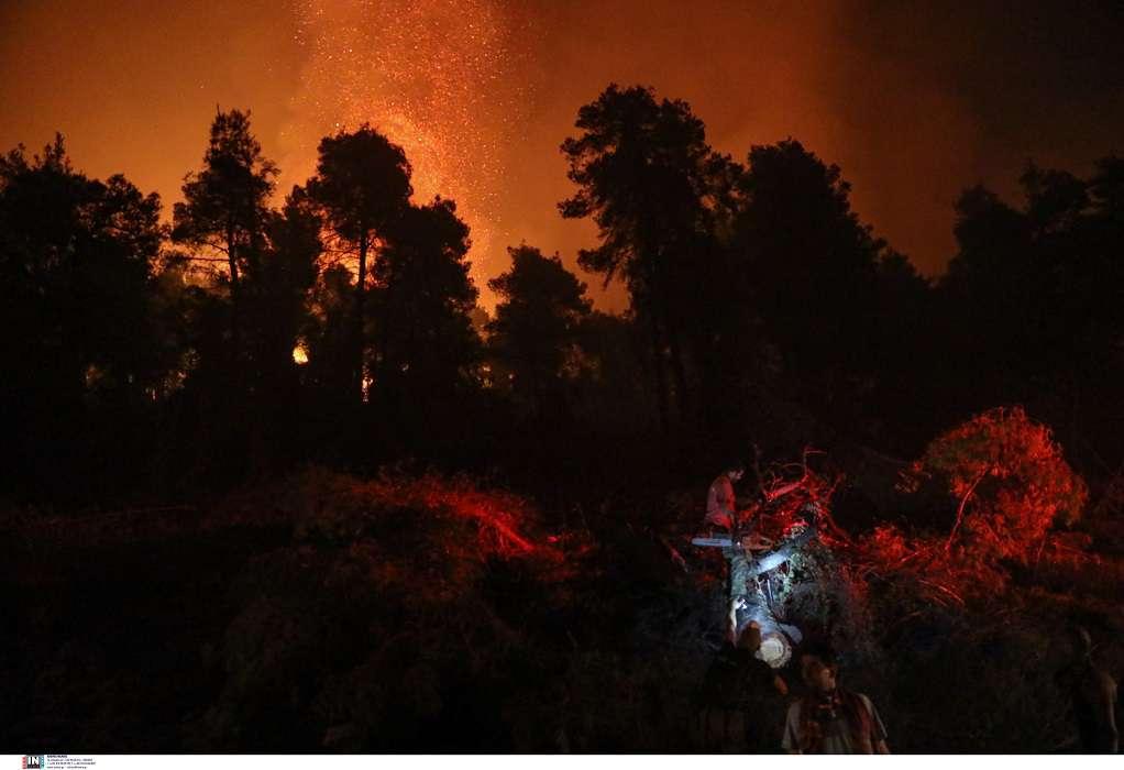 Ανοίγει αύριο η πλατφόρμα για τις αποζημιώσεις από τις πυρκαγιές – Όλα τα μέτρα στήριξης