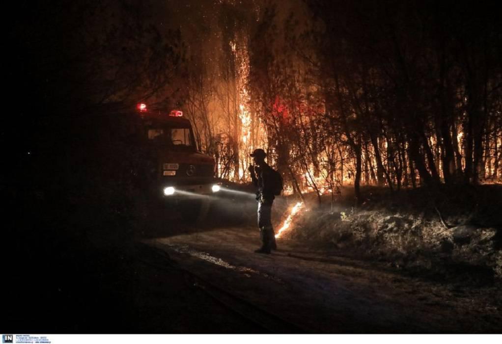 Φωτιά στην Αιγιάλεια: Καταστράφηκαν ολοσχερώς 10 σπίτια- Ζημιές και στις καλλιέργειες