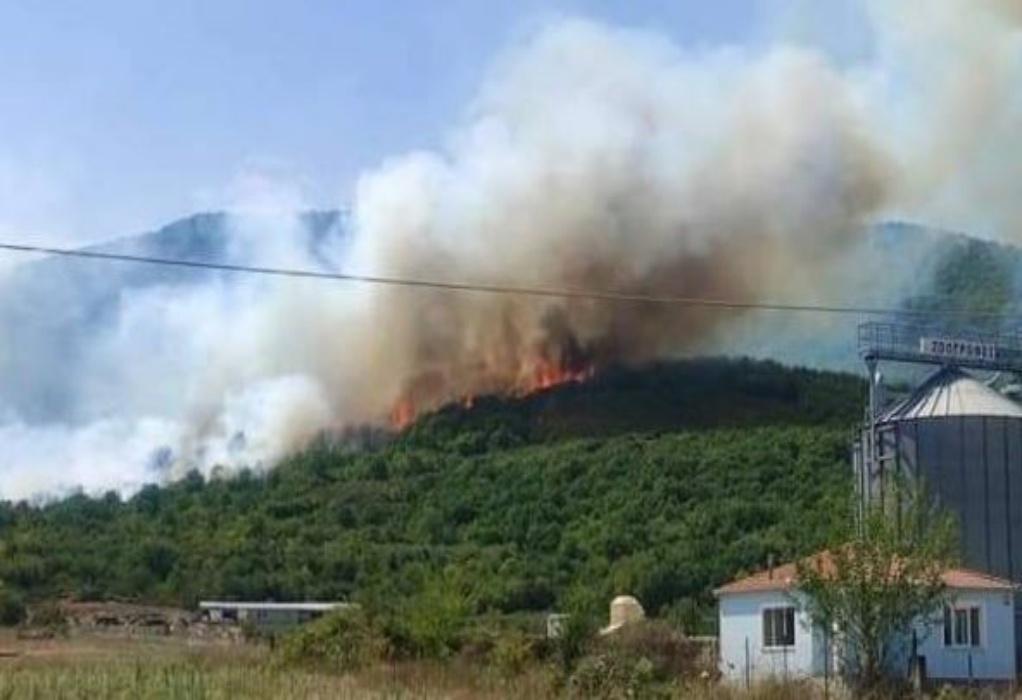 Υπό έλεγχο τέθηκε η φωτιά στους Αντιφιλίππους – Προβληματισμός για τις αναζωπυρώσεις