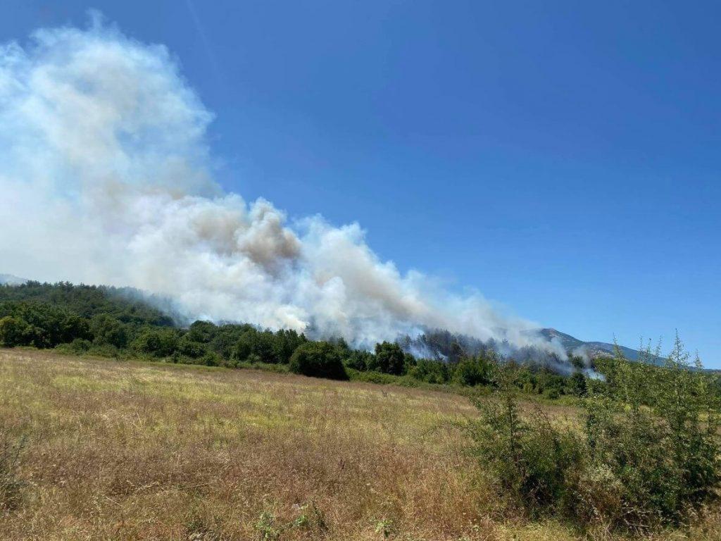 Κομοτηνή: Φωτιά στη Νυμφαία-Μεγάλη κινητοποίηση της Πυροσβεστικής (VIDEO)