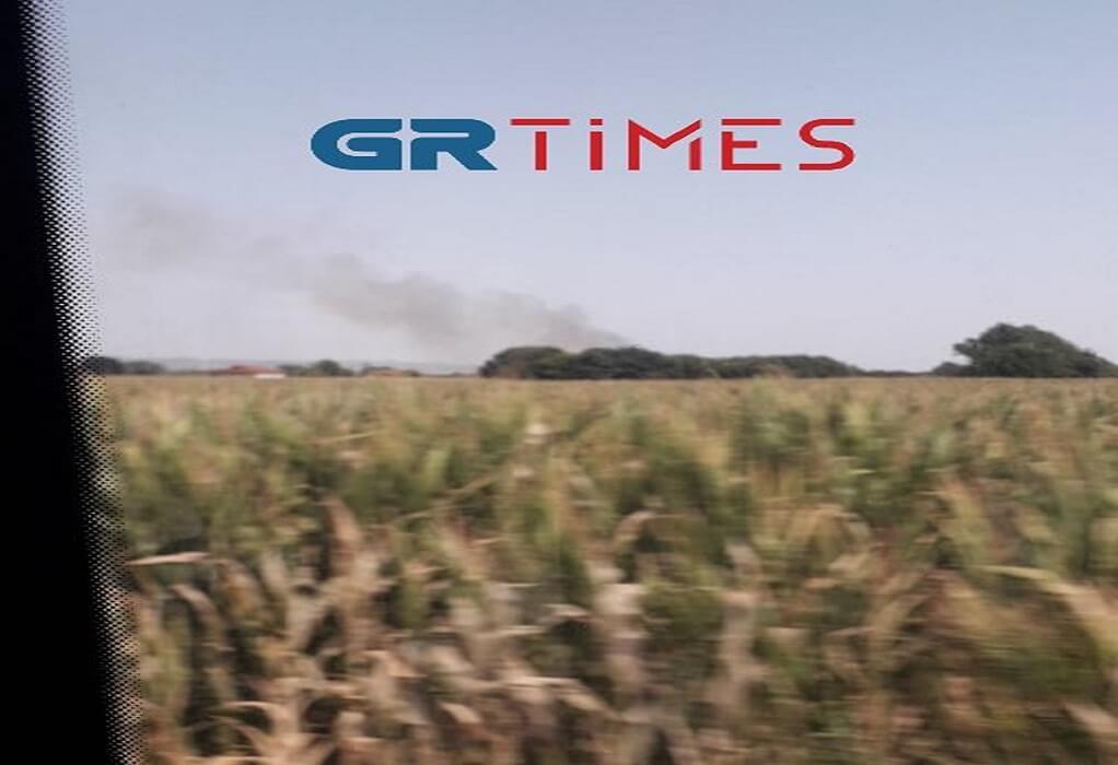 Θεσσαλονίκη: Φωτιά στον Λαγκαδά– Κινητοποίηση της Πυροσβεστικής