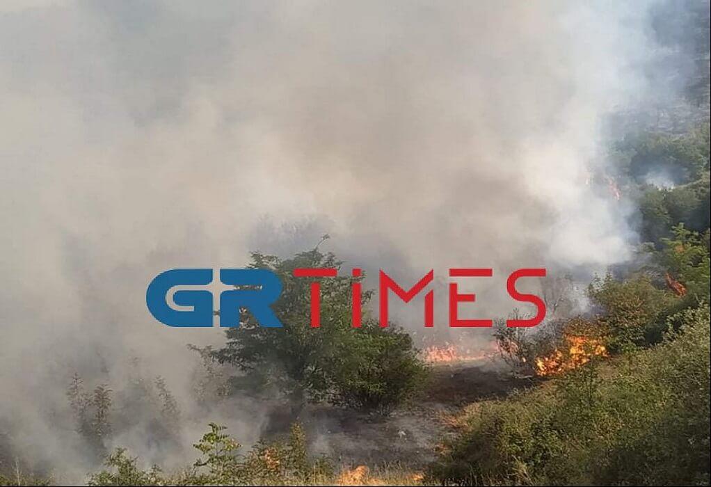 Κιλκίς: Δεν εμπνέει ανησυχία η φωτιά στη Νέα Σάντα (ΦΩΤΟ-VIDEO)