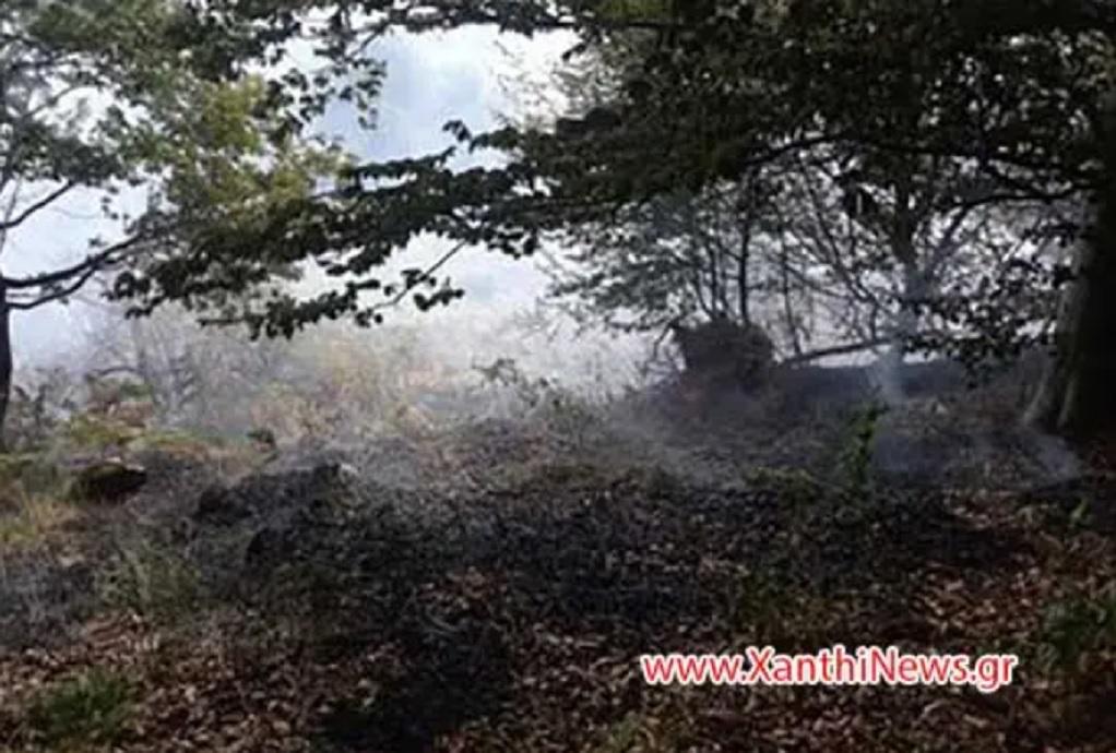 Υπό έλεγχο η φωτιά στη Ξάνθη (ΦΩΤΟ-VIDEO)