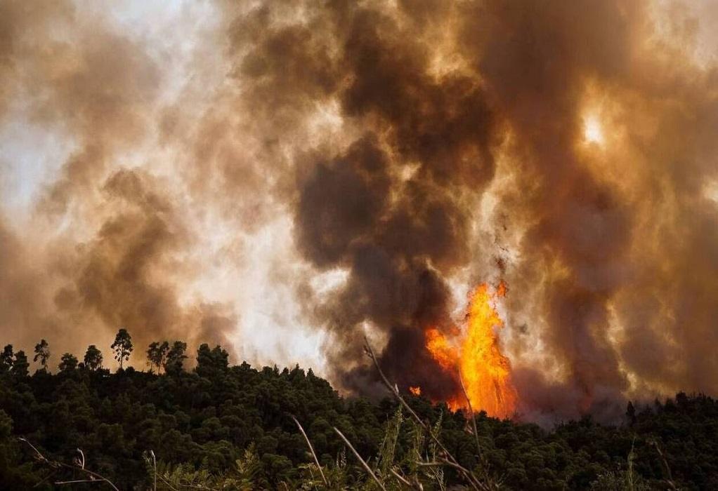 Ο Δήμος Κορδελιού-Ευόσμου συγκεντρώνει βοήθεια για τους πυρόπληκτους