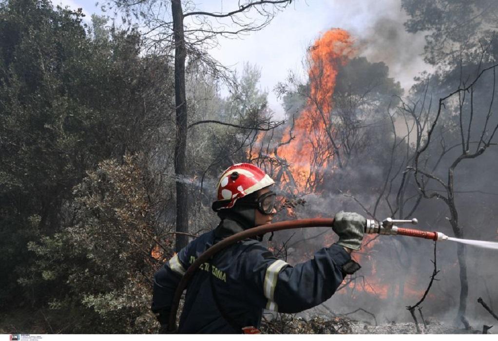 Φωτιά στο Μαστιχάρι της Κω – Επιχειρούν και εναέρια μέσα