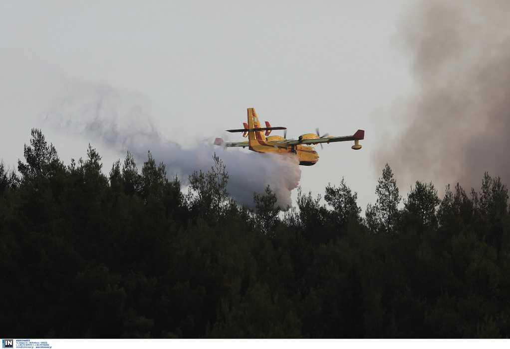 Ζερεφός: Δεν είδαμε ακόμα μεγάλες πυρκαγιές – Έρχεται τρίτο κύμα καύσωνα