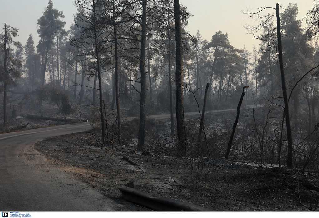 Β. Εύβοια – Αττική: Σχέδιο για απομάκρυνση κατοίκων από τα σπίτια τους σε καμένες περιοχές