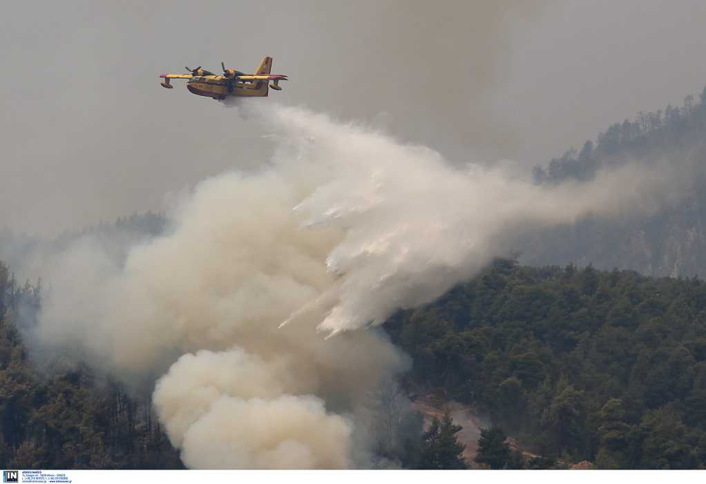 Φωτιά Εύβοια: Φτάνουν στη θάλασσα οι φλόγες στα Βασιλικά (VIDEO)
