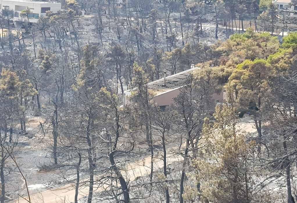 Φωτιές: Στο ΦΕΚ το «πάγωμα» των ασφαλιστικών εισφορών