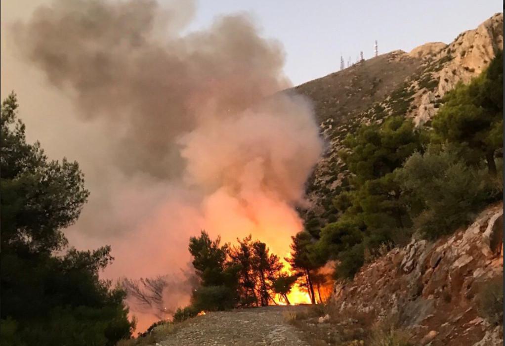 Υψηλός κίνδυνος πυρκαγιάς σε 5 Περιφέρειες, αύριο Δευτέρα