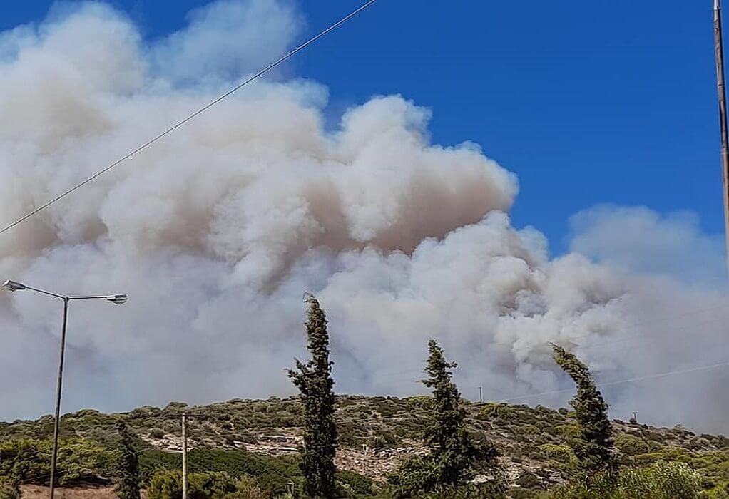Φωτιά στο Μαρμάρι Ευβοίας: Διακοπή ρεύματος σε τρεις οικισμούς