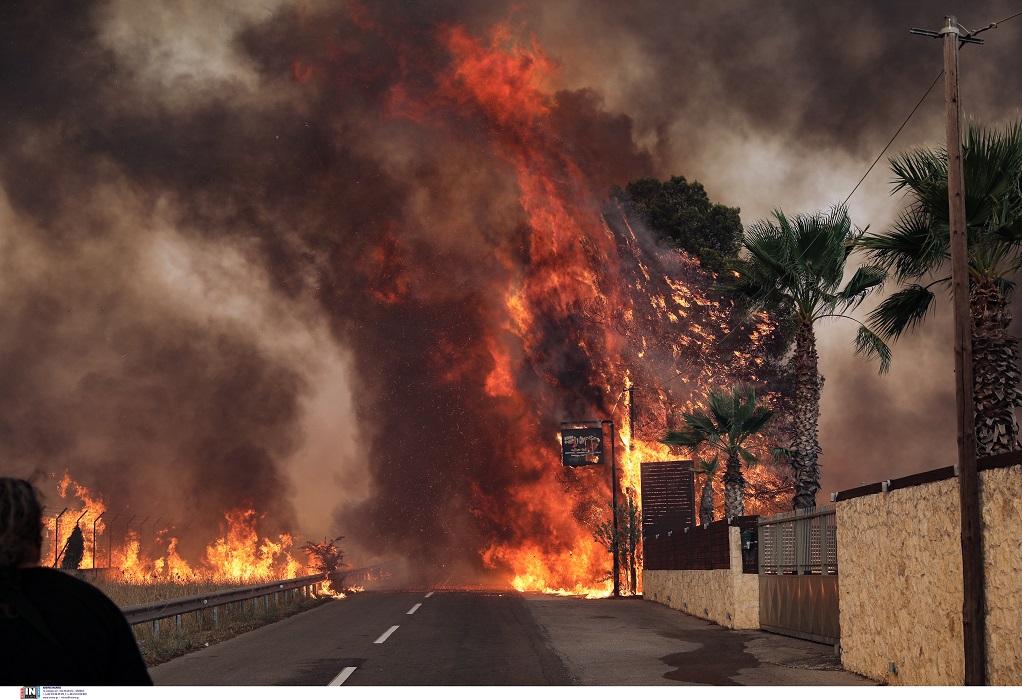Λέκκας: Πυριτιδαποθήκη η χώρα – 600 βαθμοί η θερμοκρασία στις πυρκαγιές