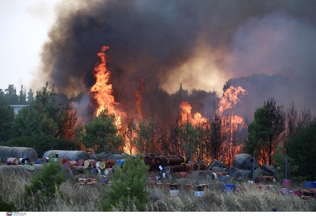 Ακραίος κίνδυνος πυρκαγιάς σε έξι περιφέρειες της χώρας αύριο Παρασκευή (Χάρτης)