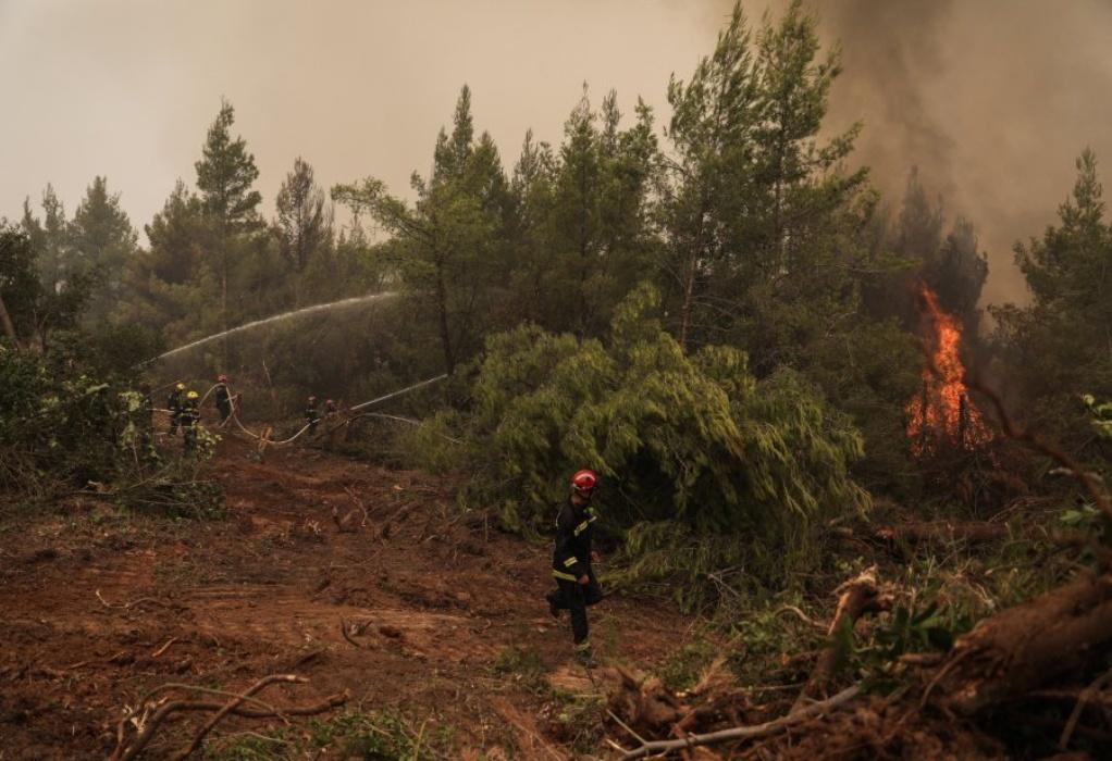 Φωτιά στη Γορτυνία: Εκκενώνεται το Καλλιάνι – Αναζωπυρώσεις σε Όχθια, Αετορράχη και Νεοχώρι