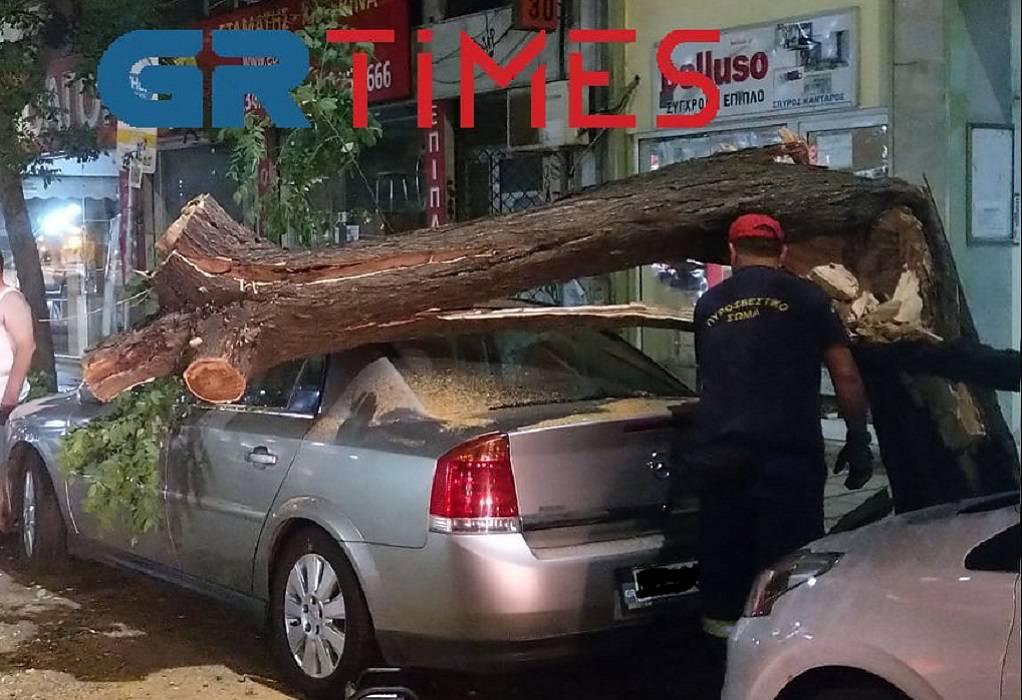 Θεσσαλονίκη: Δέντρο έπεσε πάνω σε αυτοκίνητο στο κέντρο της πόλης (ΦΩΤΟ-VIDEO)