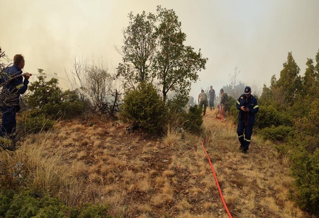 Φωτιά στην Κοζάνη – Ξεκίνησε από έκρηξη βλήματος σε πεδίο βολής(VIDEO)
