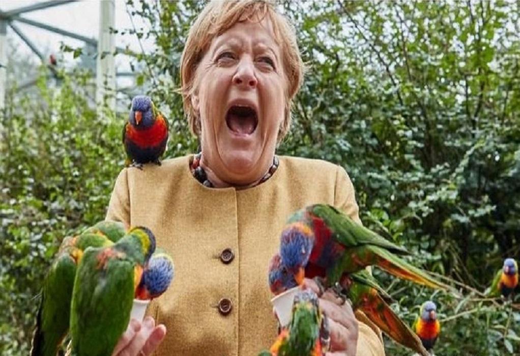 Άνγκελα Μέρκελ: Επισκέφθηκε ζωολογικό κήπο και την δάγκωσε παπαγάλος (ΦΩΤΟ-VIDEO)