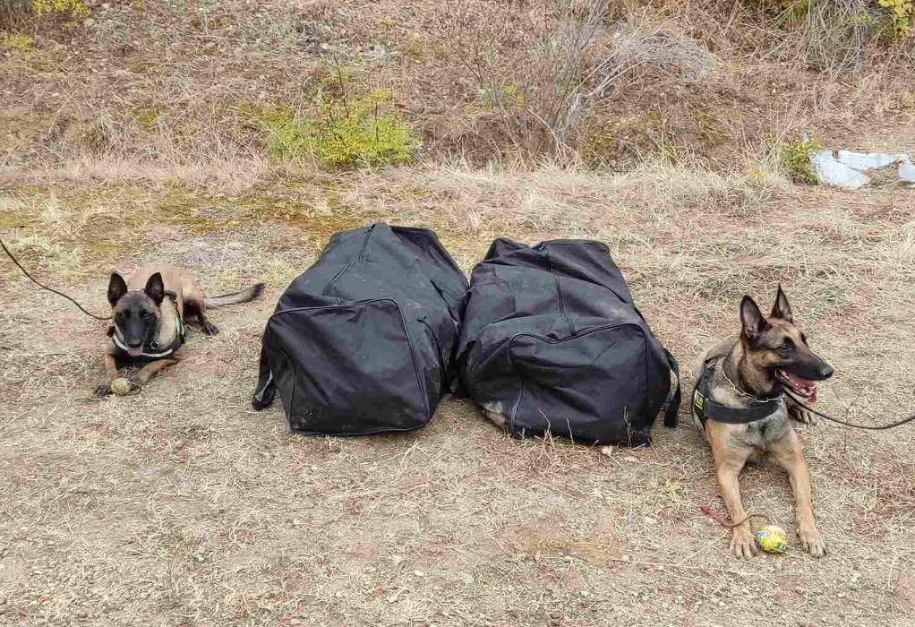 Κιλκίς: Επεισοδιακή καταδίωξη διακινητή ναρκωτικών -Μπλόκο σε 21 κιλά κάνναβης (VIDEO-ΦΩΤΟ)