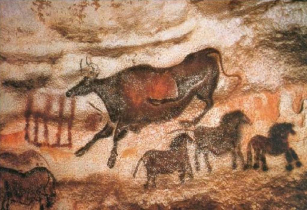 Ν. Πέραμος: Απολιθώματα χιλιάδων χρόνων φιλοξενούνται σε σχολεία της περιοχής (ΦΩΤΟ)