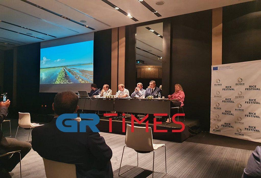 ΕU RICE: Ελλάδα και Ισπανία «μαγειρεύουν» αντεπίθεση στις εισαγωγές ασιατικού ρυζιού